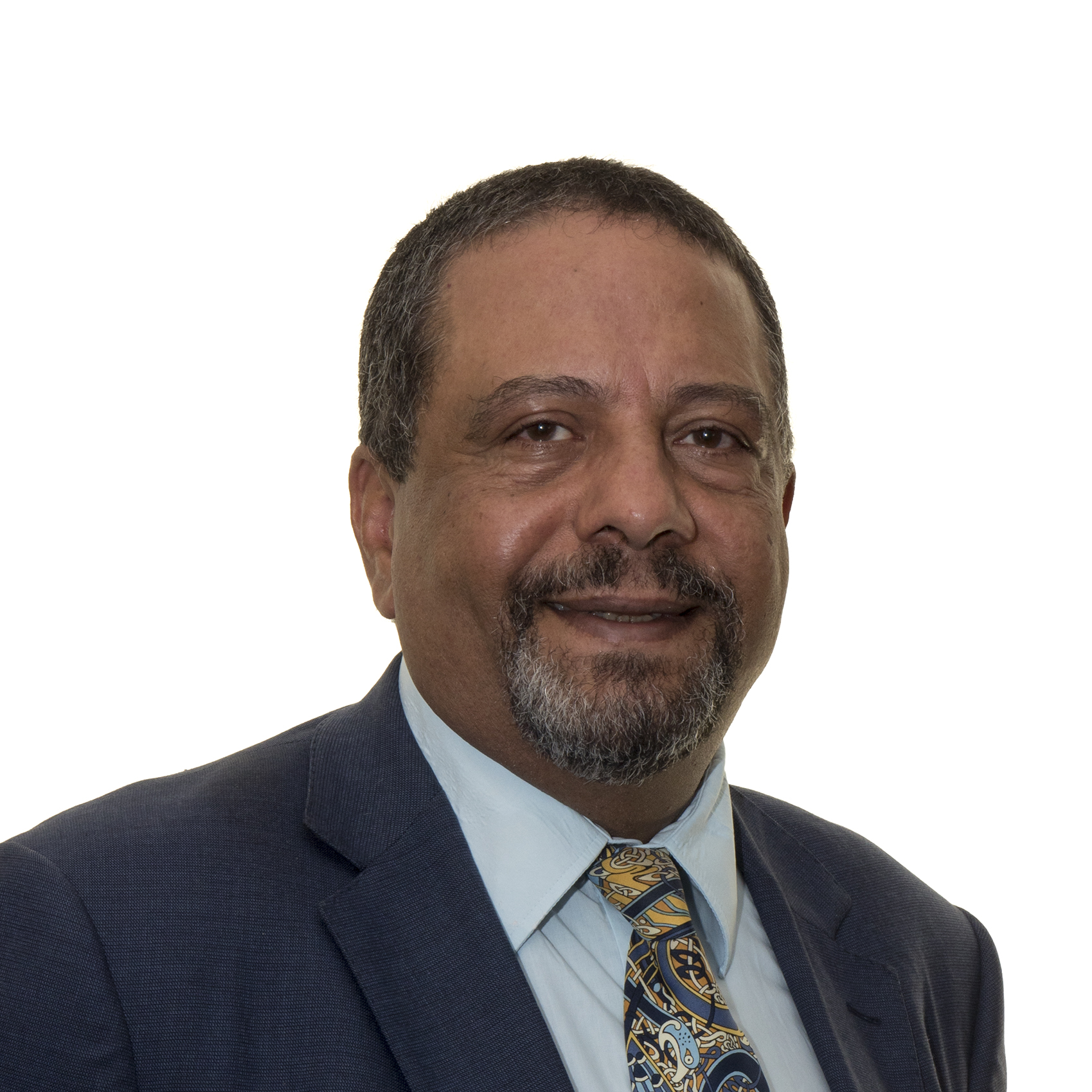 Mr Adel Makar
